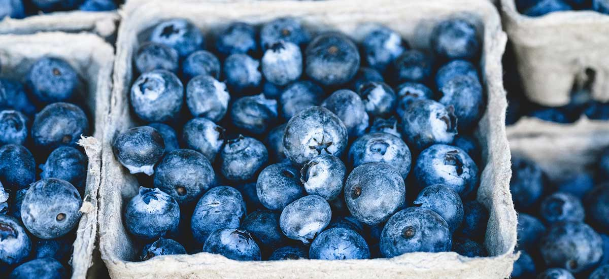 Gluten Free Treats & Eats